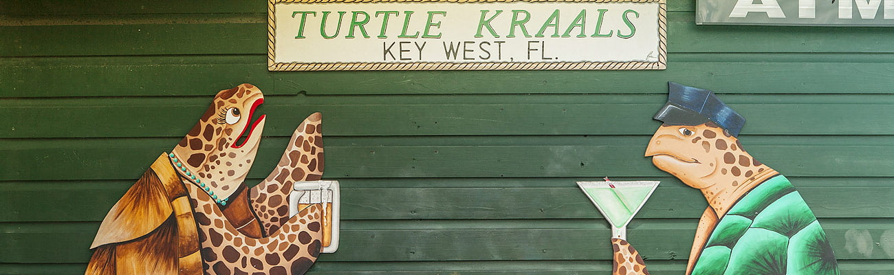 Photo of Turtle Races at Turtle Kraals